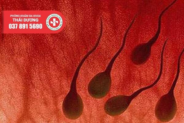 Xuất tinh ra máu - Cảnh báo nhiều nguy hiểm không nên chủ quan